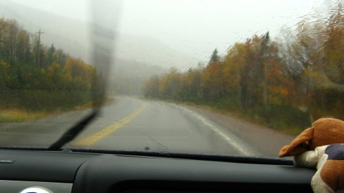 Cabot Trail by Rain