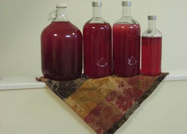 Famille de bouteilles de vodka a la canneberge